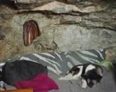 Bill's Cave, West Dawson